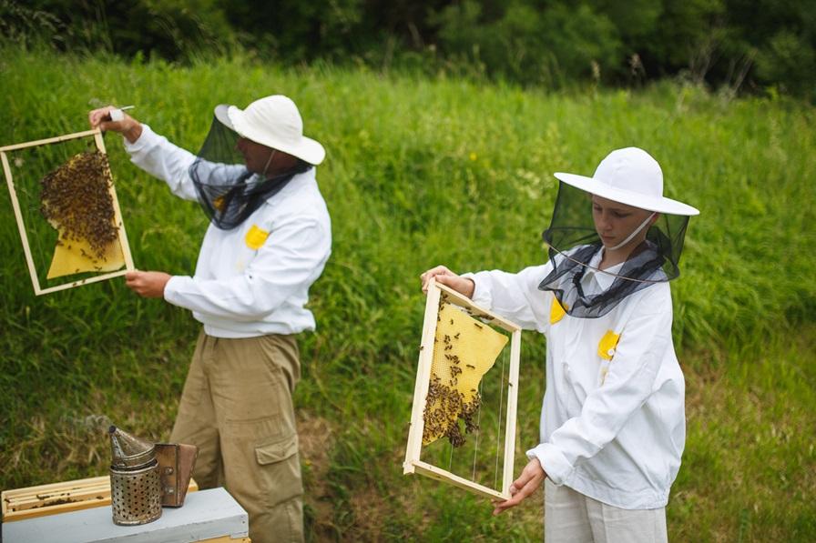 Jedným z cieľom projektu Adoptuj úľ je dosiahnuť, aby sa ľudia nebáli včiel